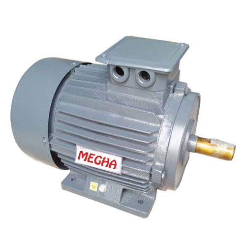 A C Induction Motor